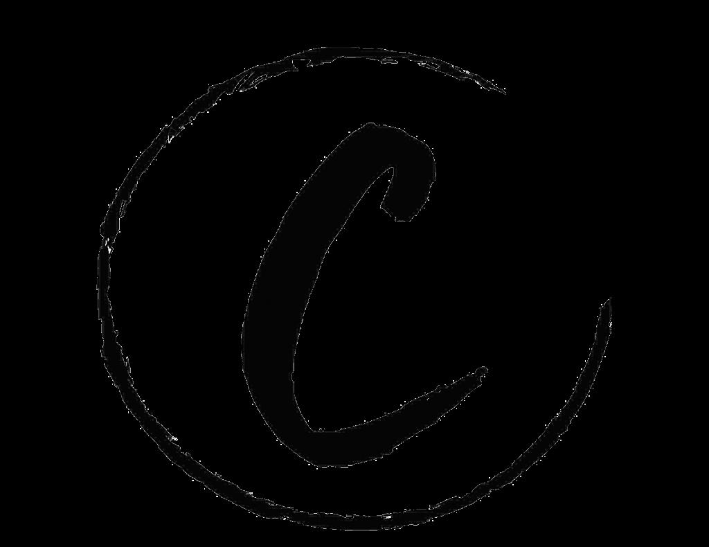 coaccel-logo